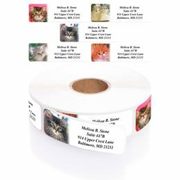Photo Kitties Designer Rolled Address Label Assortment