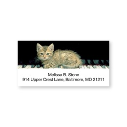Kitten Keys Sheeted Address Labels