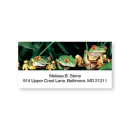Tree Frogs Sheeted Address Labels