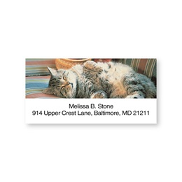 Cat Nap Sheeted Address Labels