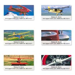 Winging It Sheeted Address Label Assortment
