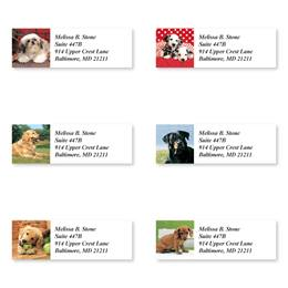 Canine Characters Sheeted Address Label Assortment