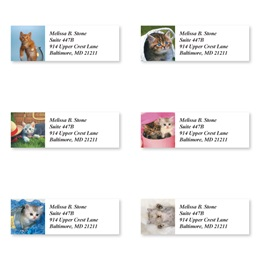 Kitty Kapers Sheeted Address Label Assortment