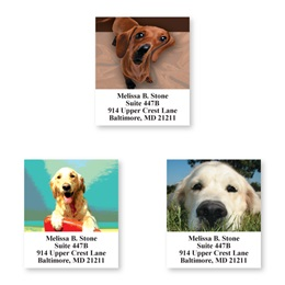 Faces Of Dogs Sheeted Address Label Assortment
