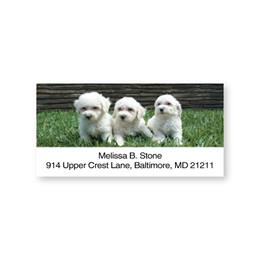 Bichon Sheeted Address Labels