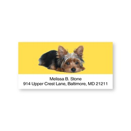 Yorkie Sheeted Address Labels