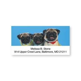 Pug Sheeted Address Labels
