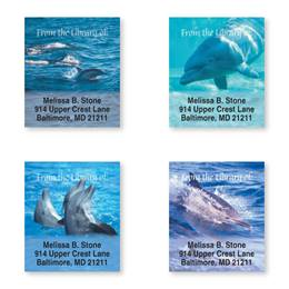 Dolphins At Play Bookplate Assortment